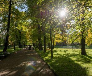 В парке Петербурга нашли пакет с мертвым ребенком